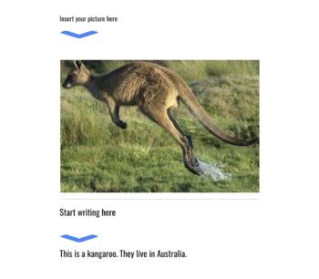 Kinder image + sentence: Google Docs Template