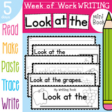 Writing Book - Look at the - 5 Days of Sequenced Activities {Healthy Food}