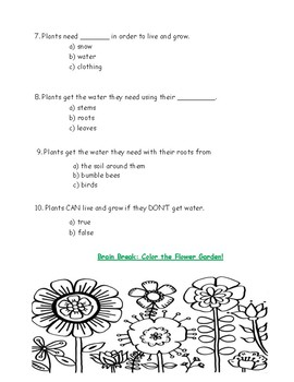 Kindergarten Amplify Science Unit 1, Chapter 2 Test