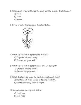 Kindergarten Amplify Science Unit 1, Chapter 3 Test