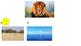 "Kindergarten Animal Habitat Quiz Game - ""Where do they live?"""