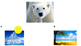 "Kindergarten Animal Habitat Quiz Game - ""What weather do they like?"""