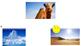"""Kindergarten Animal Habitat Quiz Game - """"What weather do t"""