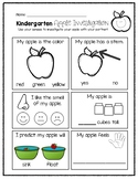 Kindergarten Apple Investigation