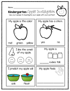 Kindergarten Apple Investigation