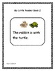 Guided Reading - Kindergarten High Frequency Words with Reader