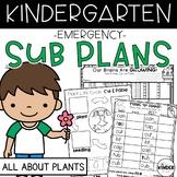 Plants Kindergarten Sub Plans April