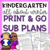 Kindergarten Winter Emergency Sub Plans January