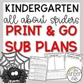 October Kindergarten Sub Plans Spiders