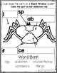 October Kindergarten Sub Plans Spiders