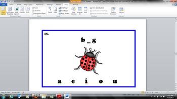 Kindergarten Common Core - CVC Pattern - Picture Task Cards