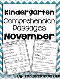 Kindergarten Comprehension Passages