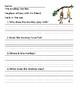 Kindergarten Comprehension Sheets