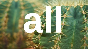 Kindergarten Dolch Sight Words Powerpoint - cactus