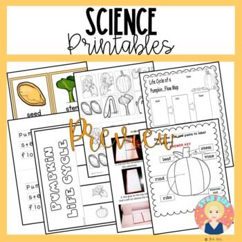 FALL ACTIVITIES for Kindergarten and First Grade PUMPKIN THEMED
