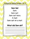 Kindergarten Fluency Passages with Comprehension Questions FREEBIE