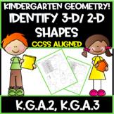 Kindergarten Common Core:  Geometry!  Identify 3-D/ 2-D Shapes