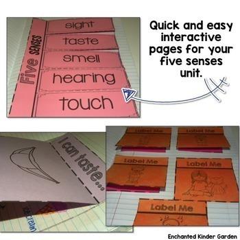 Five Senses Activities Unit: Interactive Notebook