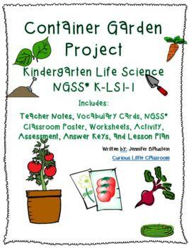 Kindergarten Life Science-Container Garden Project