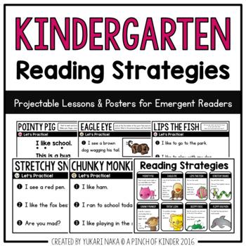 Kindergarten Literacy Assessment Bundle