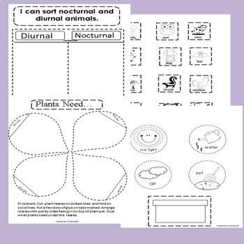 Kindergarten Interactive Notebooks Bundle