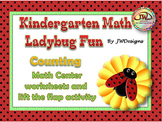 Ladybug Math Activities