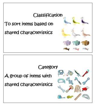 Kindergarten Common Core Math Measurement and Data- Classification