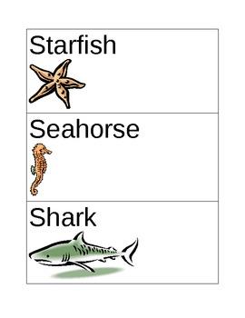 Kindergarten Ocean Words