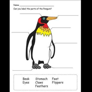 Kindergarten Penguin and Polar Bear Activities