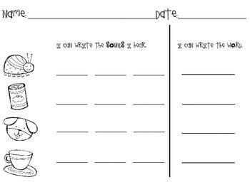 Kindergarten Phoneme Segmentation FREEBIE!