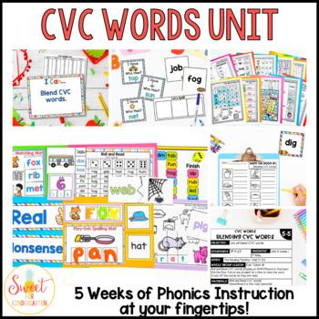 Kindergarten Phonics Curriculum- CVC Words