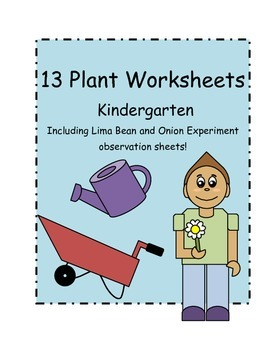 Kindergarten Plant Worksheets