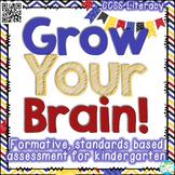 Kindergarten Portfolio & Grading - Standards Based & Formative Assessments