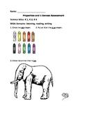 Kindergarten Properties of Objects and 5 Senses Assessment