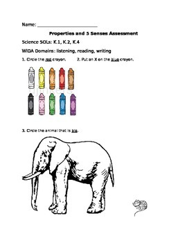 Kindergarten Properties of Objects and 5 Senses Assessment