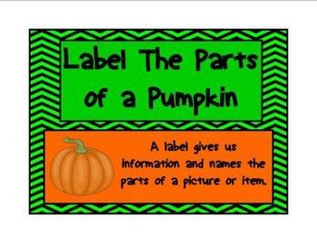 Kindergarten Pumpkin Fun Kit (png. files)