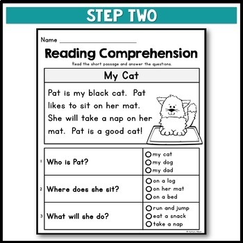Kindergarten Reading Comprehension Passages - Set 2
