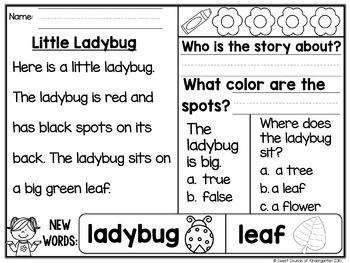 Kindergarten Reading Comprehension Passages {Spring}