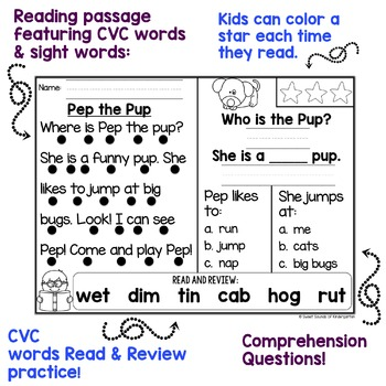 Kindergarten Reading Comprehension Passages {Volume 3}