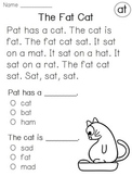 Kindergarten Reading Fluency Comprehension Passages (Short Vowels Word Families)