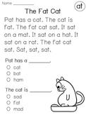 Kindergarten Reading Fluency Comprehension Passages (Short