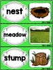 Kindergarten Reading Street Amazing Word Cards A Bed for t