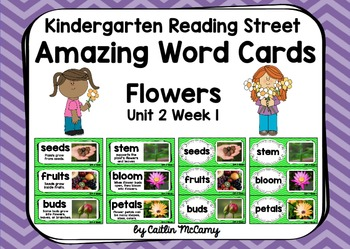 Kindergarten Reading Street Amazing Word Cards Flowers