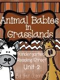 Animal Babies in Grasslands