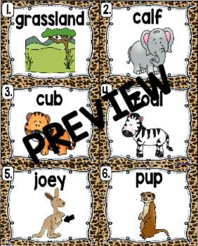 Kindergarten Reading Street: Animal Babies in the Grasslands Write the Room