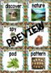 Kindergarten Reading Street: Nature Spy Write the Room