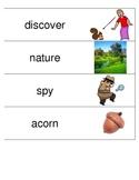 Kindergarten Reading Streets Amazing Word cards Unit 2 Week 2