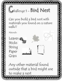 Kindergarten STEM Bird Nest Challenge