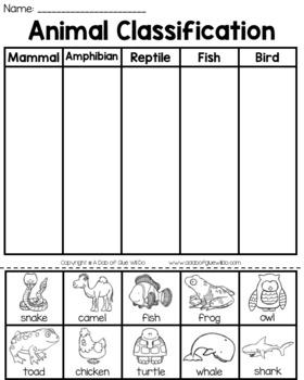 Kindergarten Science Bundle for May