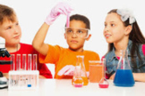 Kindergarten Science Curriculum Guide and Full Course